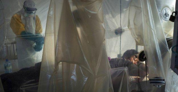 Ébola: nuevos fármacos eficaces en el 90% de los casos