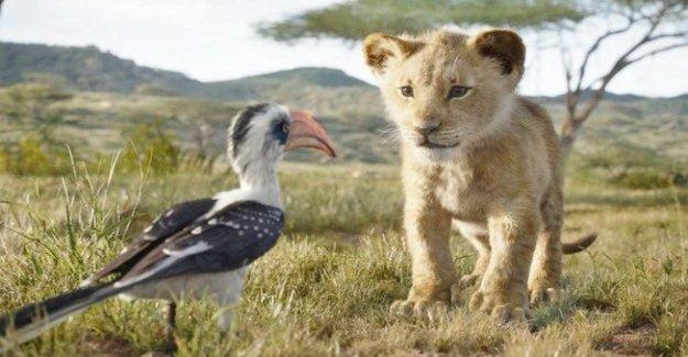 'El Rey León', de acuerdo con Jon Favreau: yo, También, han experimentado una pérdida, pero siempre se puede encontrar la alegría