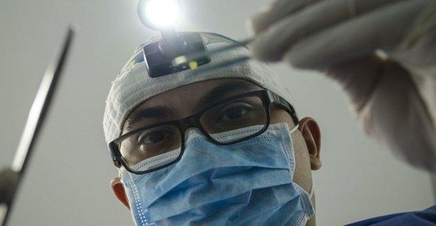 El gen que ayuda a que el diente de regenerarse a sí mismo