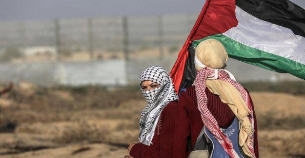 El medio oriente, la milicia de Hamas murieron en el territorio de israel