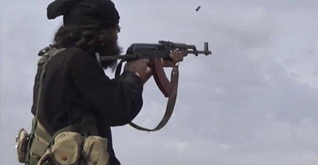 El terrorismo, la advertencia de las naciones unidas: los Nuevos ataques del Isis por el fin de año