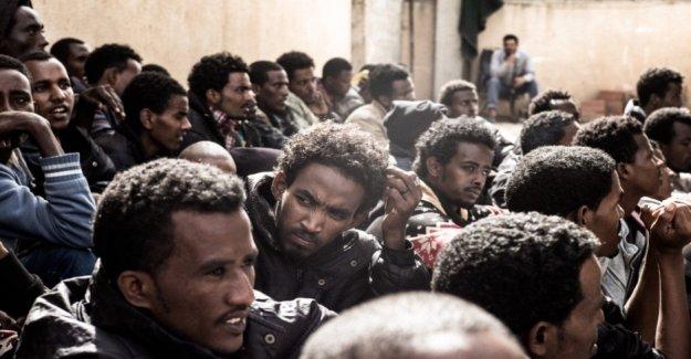 Eritrea, impacto en la educación del sistema de conscripción Aumento del abandono escolar temprano y el éxodo de estudiantes y profesores