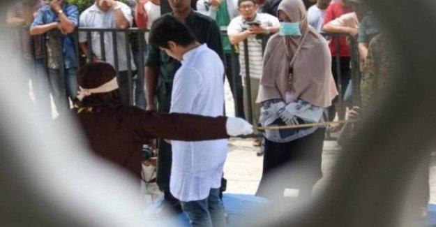 Indonesia, las relaciones de amor que son contrarias a la sharia: 14 hombres jóvenes azotado en siete días