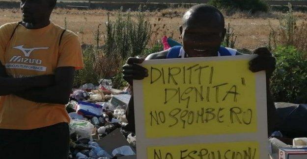 La limpieza de la ex Felandina, cientos de personas sin una alternativa
