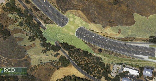 Prohibido el tránsito de vehículos en California será construido en el puente sólo para los animales