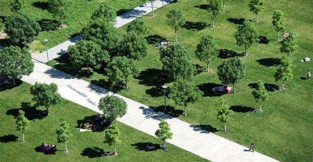 Volvo Car Italia para el conjunto de la sostenibilidad ambiental
