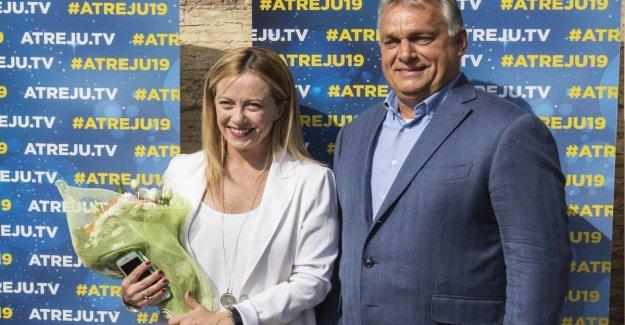 Choque Orbán-De Maio. El gobierno de Italia se ha separado de la gente. Replicación: para Evitar las interferencias innecesarias