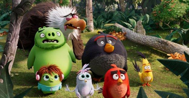 De vuelta a las aves y los cerdos de Angry Birds, pero esta vez se va del equipo