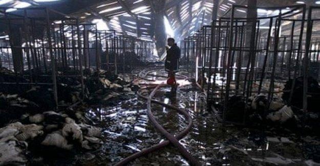 Pakistán, Ali Empresas: después de 7 años en el País asiático todavía fábricas que son inseguras