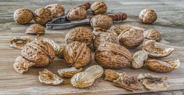 Se tarda 14 gramos de frutos secos cada día para prevenir el aumento de peso