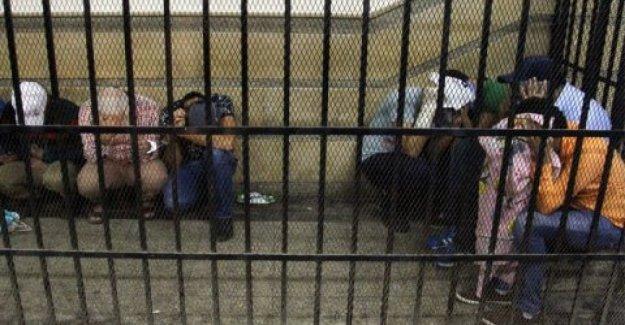 Egipto, en el acto de la más grande ola de arrestos en masa por la llegada al poder de Al-Sisi