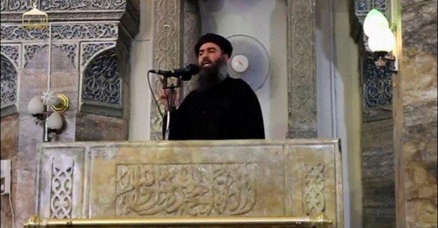 Fox News: tal vez me mataron al jefe de la a Baghdadi. La Casa Blanca: el Triunfo va a hacer un anuncio importante.