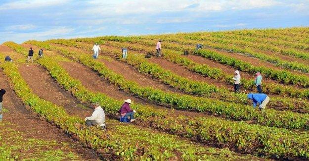 La cooperación, que se presentó a la cuenta el modelo como los Resultados del Fondo para la inversión del sector privado en los objetivos sociales y ambientales