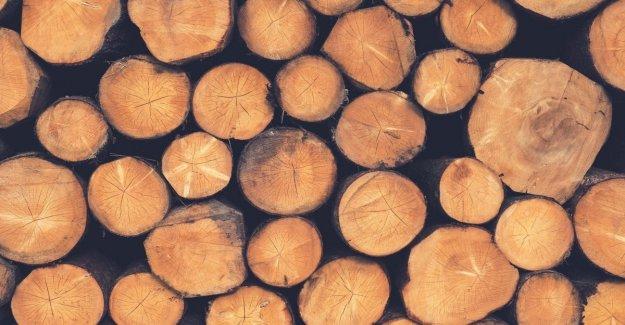 Mantener caliente sin calentamiento del planeta: la madera es el mejor amigo del medio ambiente