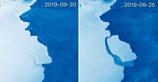 Un gigantesco iceberg desprendido de la Antártida. Los expertos: es normal