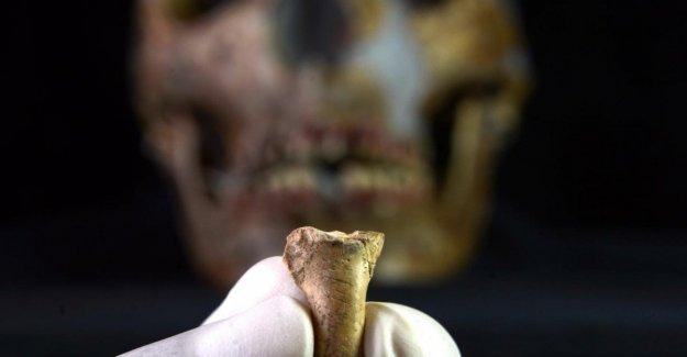 El hombre de neanderthal, el último adorno: un colgante de la garra de un águila