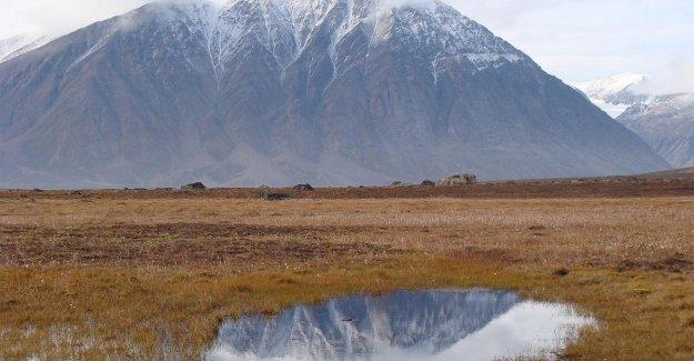 La investigación, que se mide en el momento exacto en que desaparece el permafrost