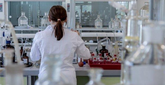 La leucemia mieloide, en pruebas con ratones descubrieron función de la proteína