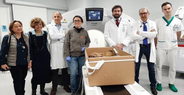 Las momias del Antiguo Egipto, el análisis en el centro Médico de Ronaldo