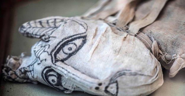 Momias, leones, gatos, serpientes y cocodrilos: el descubrimiento excepcional en Saqqara