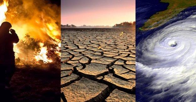 Cinco maneras de contrarrestar el estrés del cambio climático