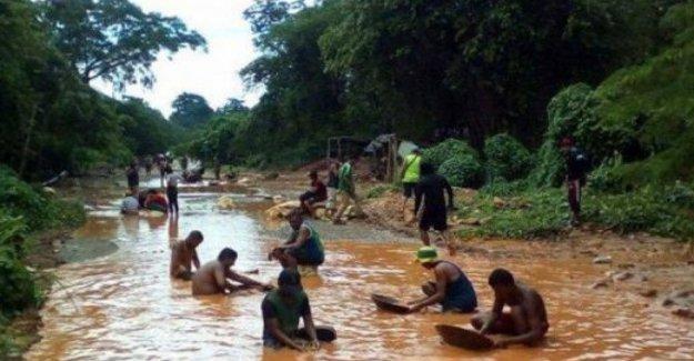 Venezuela y la guerra de el oro: la masacre de indígenas en la Amazonía