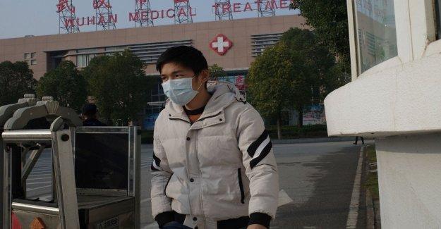 China: completa el mapa genético del nuevo virus similar al Sars