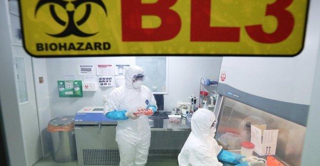 China, que murió el primer paciente que sufre de neumonía y misterioso. Muchos de los enfermos había asistido el mercado de pescado, Wuhan