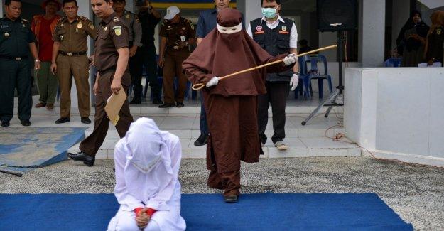 Indonesia, el primer vengador mujer: el látigo, una chica que ha tenido relaciones sexuales fuera del matrimonio