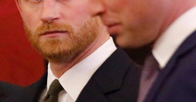 Reino unido hasta la cumbre de verdad, Harry y William están negando el tabloide: Ningún veneno entre nosotros