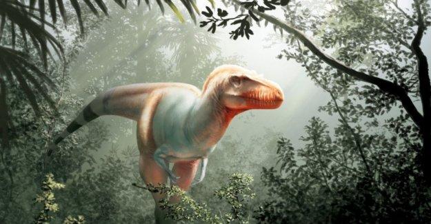 Descubierto primo de T. rex, un dinosaurio que no dejó escapar