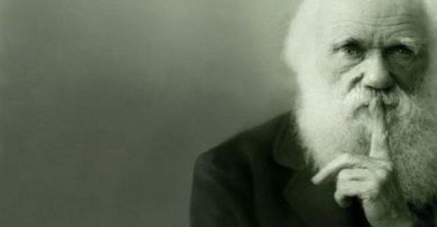 El Día de Darwin, un día dedicado al padre de nuestros orígenes