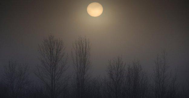 El clima, de enero de 2020 es el mes más caluroso jamás