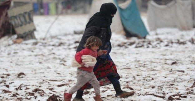 Siria, al menos 7 niños murieron a causa de las heladas, y las terribles condiciones de vida en los campamentos para personas desplazadas en Idlib