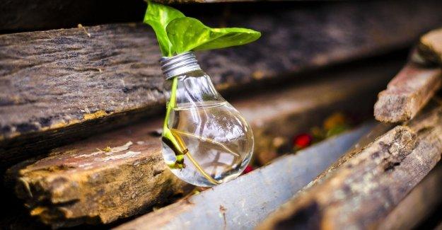 De residuos, #ricicloincasa: el desafío de la reutilización y diferenciar los residuos