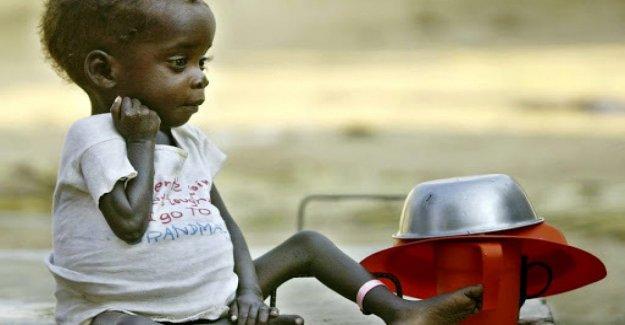 El hambre, aquí están los puntos críticos de inseguridad alimentaria aguda y requieren atención urgente