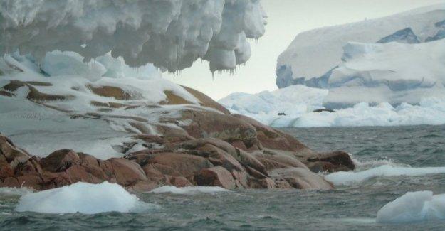 El hielo se derrite: la Antártida marca una isla