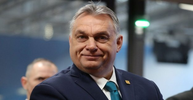 Hungría, Orbán contra la Roma: ¿por Qué gastar en los que no trabajan? Los discriminados son los niños con la húngara