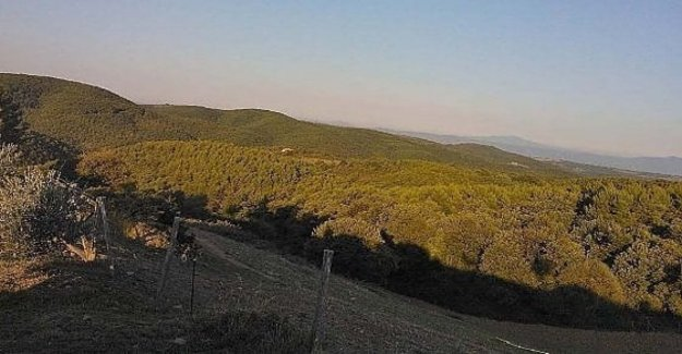 La Unesco Reserva de Monte Peglia (Umbría) es el lanzamiento de un centro de estudios sobre la emergencia climática, y medicina ambiental