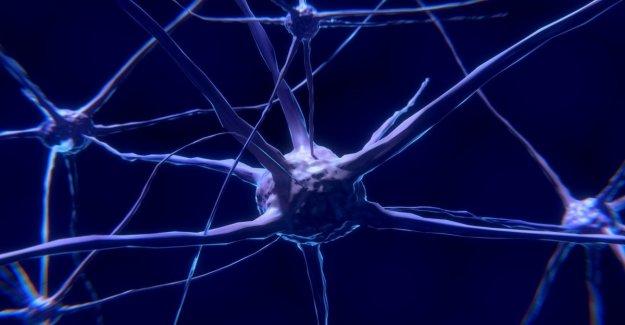 La primera de las neuronas genéticamente modificadas y controladas eléctricamente