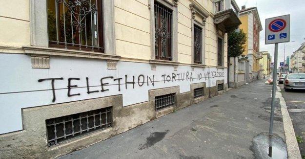 La teletón, el ataque de los animales en el milán de la sede de la Teletón. Pero no somos torturadores de animales