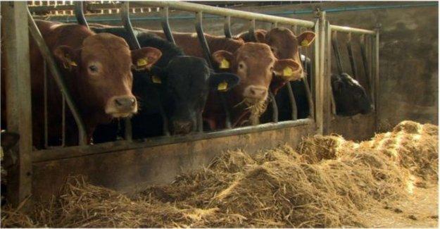 £25m agricultura paquete no es una bala mágica'