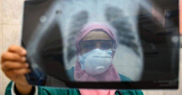 Egipto médicos acusan a gobierno por las muertes