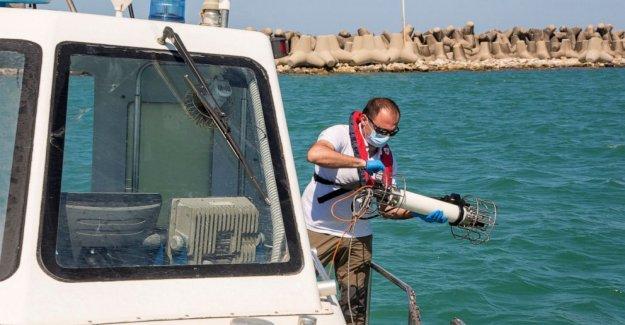 Italia mares hablar: No hay turistas o barcos que significa el agua más limpia