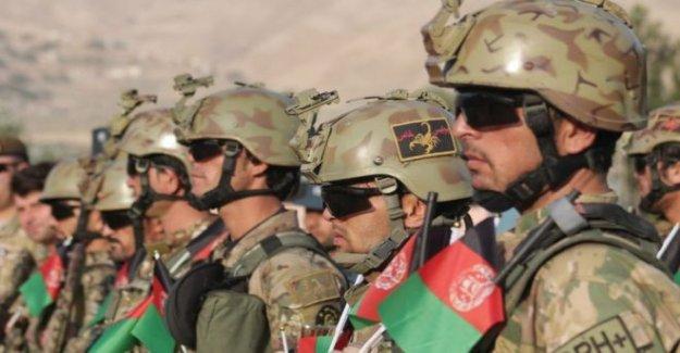 Los Talibanes afganos anuncian tres días de Eid alto el fuego