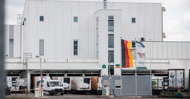 Alemania se apresura para contener el brote de coronavirus en el matadero; más de 1.300 infectado