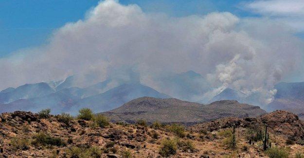 Arizona Arbusto de Fuego se duplica en tamaño como los incendios forestales de California romper