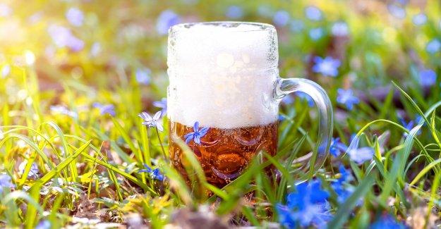 Cervecería quiere pagar a alguien para caminata Sendero de los Apalaches y asistir a la cerveza partes