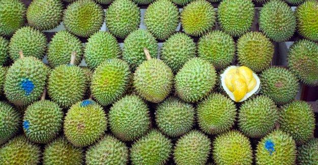 Durian olor de las fuerzas alemanas de la oficina de correos para evacuar, dice informe