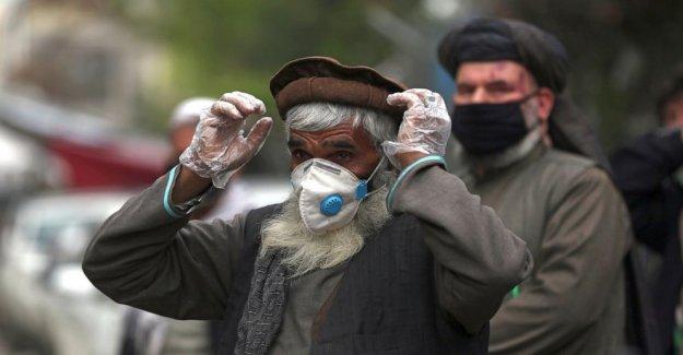 Grupo: la Falta de pruebas de virus empuja hacia Afganistán crisis